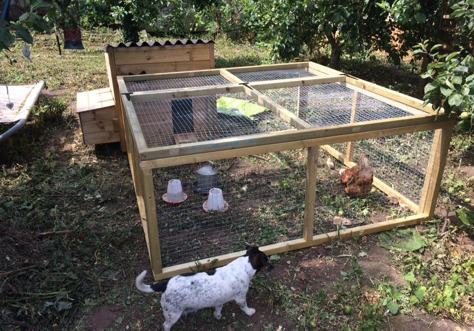 Wooden chicken enclosures
